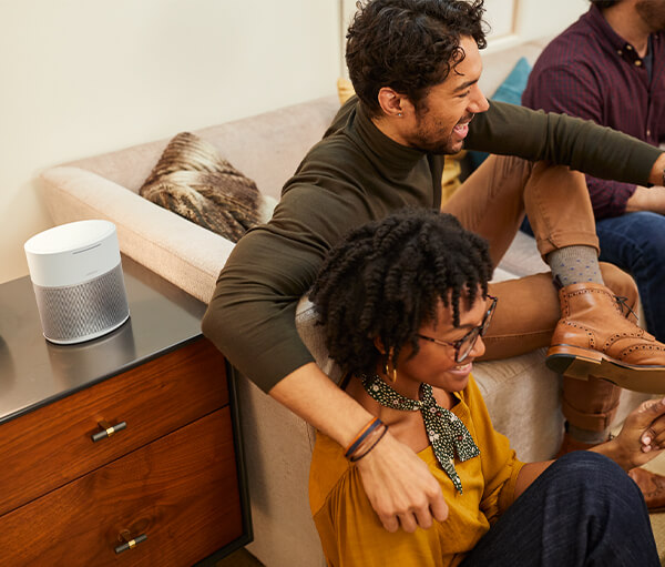 Description - Bose Home Speaker 300 (4)